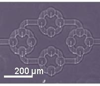 Microfluidica